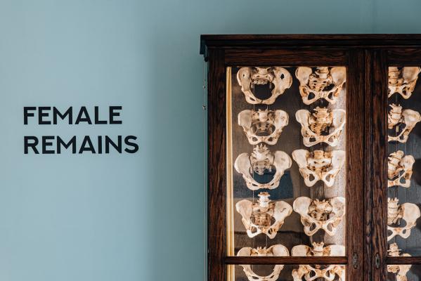 Ausstellung Female Remains